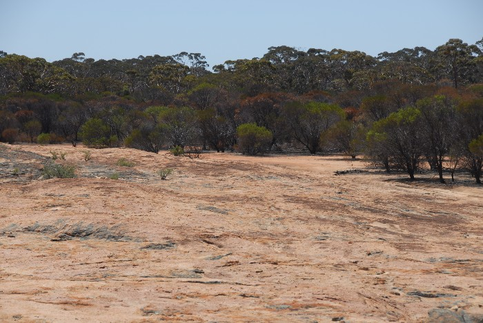 Lower levels of Gnarlbine Rock.
