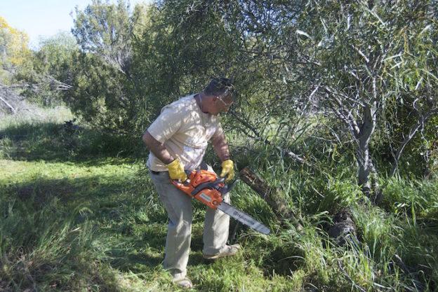Joe with chainsaw.