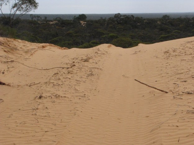 Top of a dune.