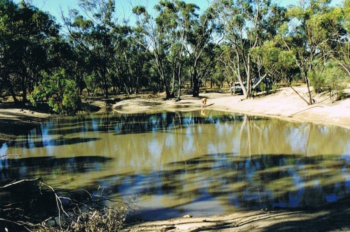 Totadgin Dam 1995