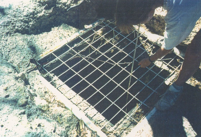 Totadgin Well 1991
