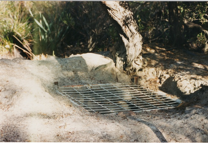 Totadgin Well 1995