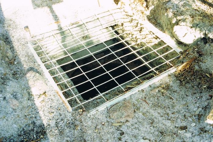 Totadgin Well 1995