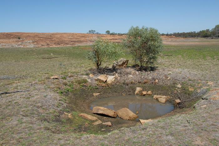 A waterhole at Weowanie Rock.
